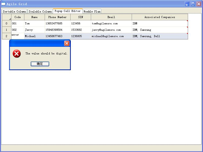 The Validator of Cell Editor.